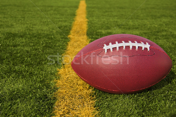 Football Just Over the Goal Line Lower Right Stock photo © saje