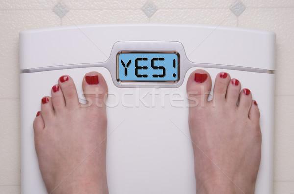 YES Scale Stock photo © saje