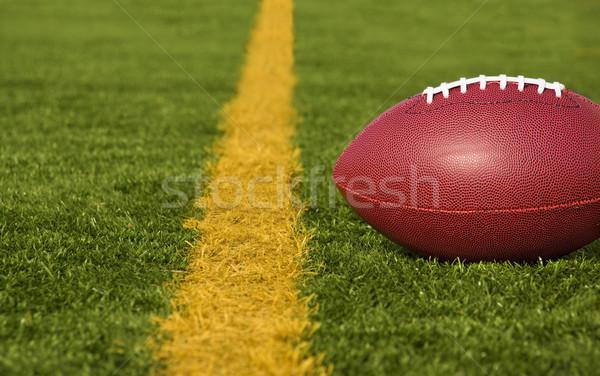 Football court objectif ligne étroite mensonges Photo stock © saje