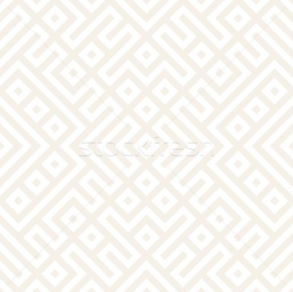 Foto stock: Geométrico · étnicas · elegante · textura · vector · resumen