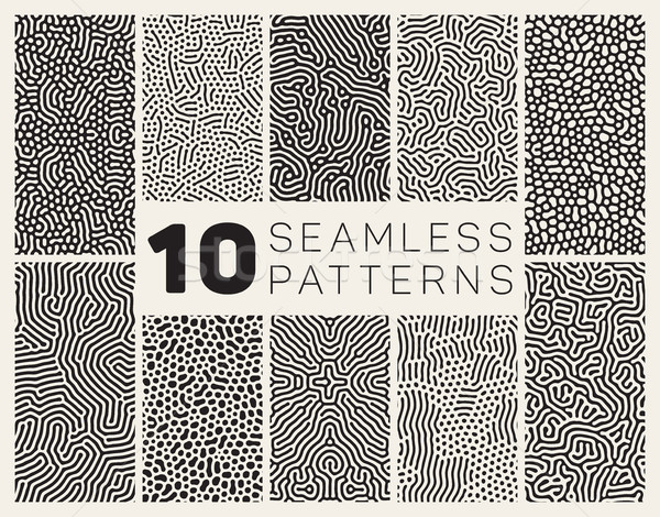 Ten Vector Seamless Black and White Organic Patterns Stock photo © Samolevsky