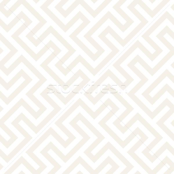 Trendy Monochrome Line Lattice. Vector Seamless Black and White Pattern. Stock photo © Samolevsky