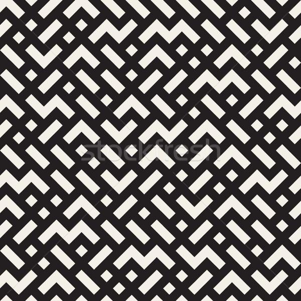Irregular Mazy Lines. Vector Seamless Black and White Pattern. Stock photo © Samolevsky