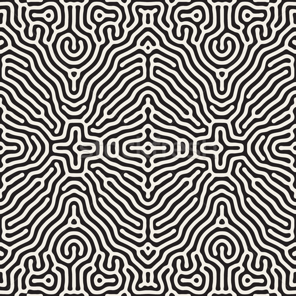 Vector Seamless Organic Rounded Jumble Lines Ethnic Pattern Stock photo © Samolevsky