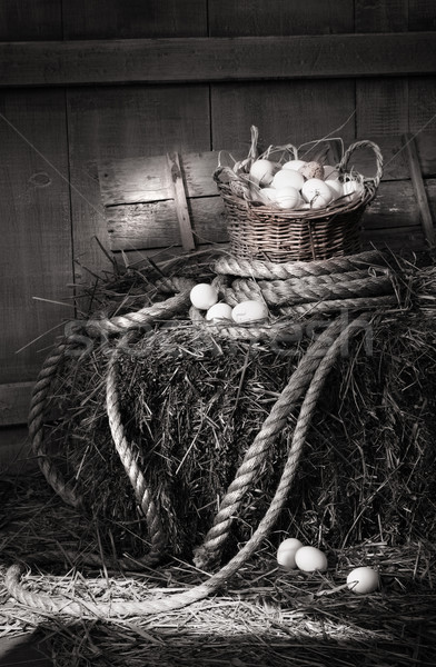 Basket of eggs on a bale of hay Stock photo © Sandralise