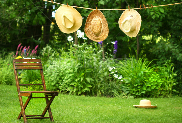 Straw hats on an old clothesline Stock photo © Sandralise