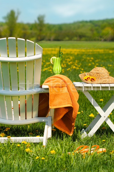 Adirondack chair in grass ready for relaxing Stock photo © Sandralise
