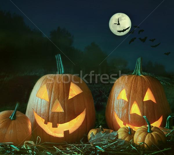 Night scene with Halloween pumpkins and moom Stock photo © Sandralise