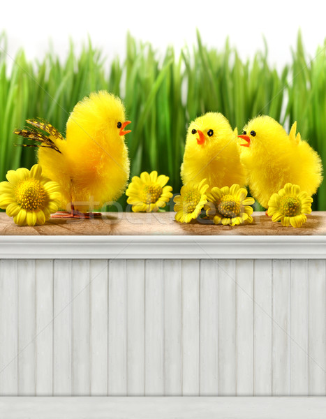 Happy Easter Spring background/backdrop Stock photo © Sandralise