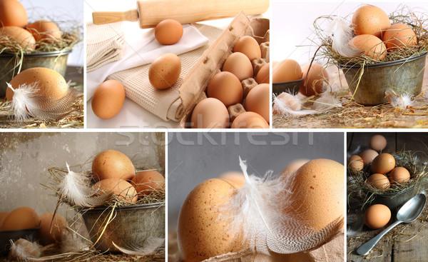 Stock fotó: Kollázs · barna · tojások · képek · ünnepek · fű