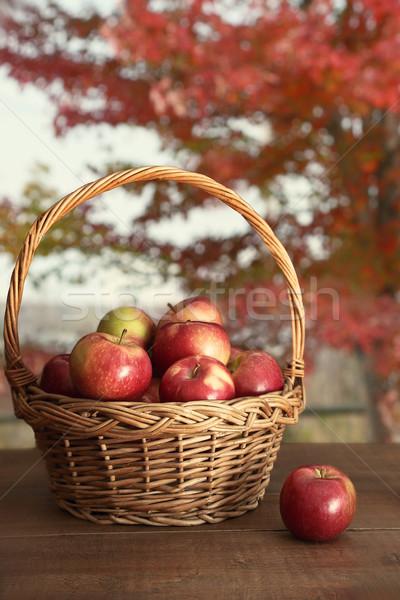 Basket of freshly picked apples on table Stock photo © Sandralise