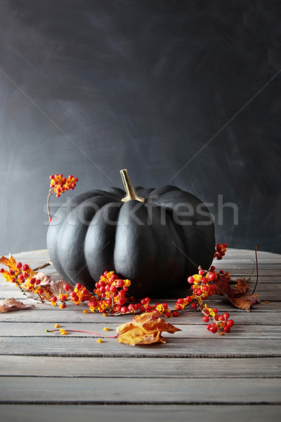 Black colored pumpkin with berries and leaves on table Stock photo © Sandralise