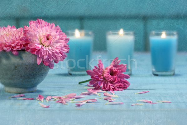 Pink chrysanthemum flowers with candles Stock photo © Sandralise