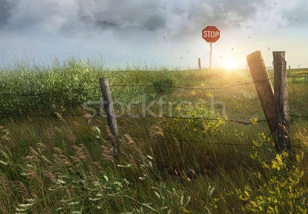 Vieux pays clôture ciel fleur laisse Photo stock © Sandralise