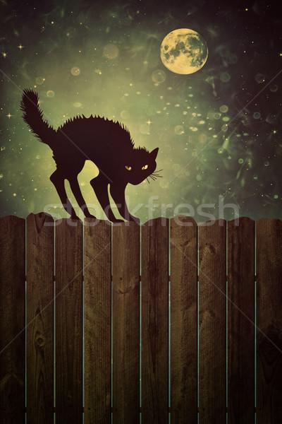 黒猫 フェンス 1泊 ヴィンテージ 見 古い木材 ストックフォト © Sandralise