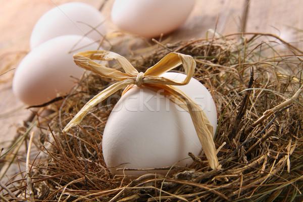 Blanco huevo paja arco nido madera Foto stock © Sandralise