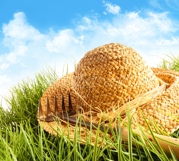 Straw hat on grass with blue sky  Stock photo © Sandralise