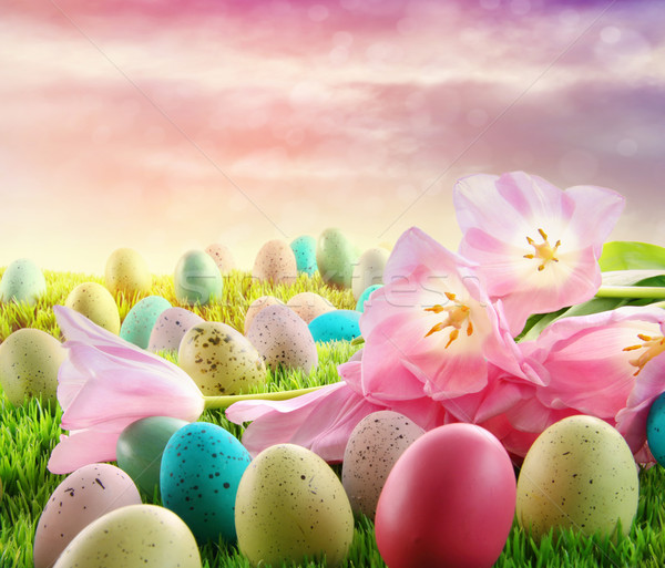 Eggs with pink tulips in the grass Stock photo © Sandralise