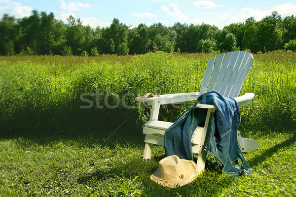 Jeans laying on adirondack chair in field Stock photo © Sandralise