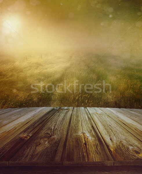 Wood floor with a prairie path in background Stock photo © Sandralise