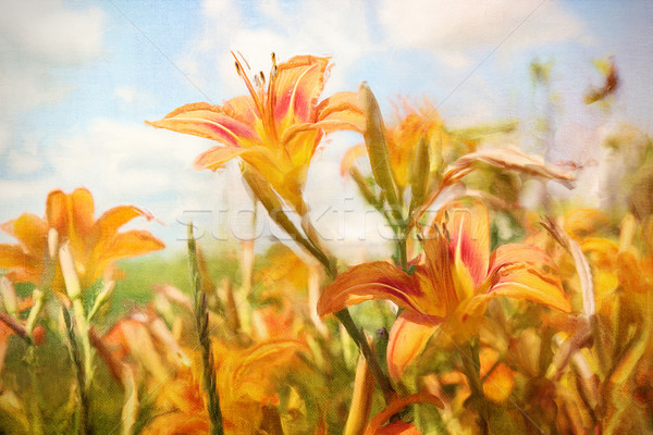 Digital painting of orange daylilies Stock photo © Sandralise
