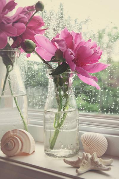 Peony flowers in milk bottles in the window  Stock photo © Sandralise