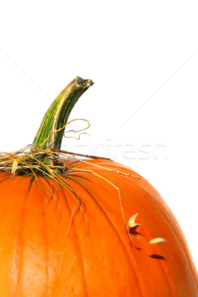 Closeup of pumpkin with bits of straw  Stock photo © Sandralise
