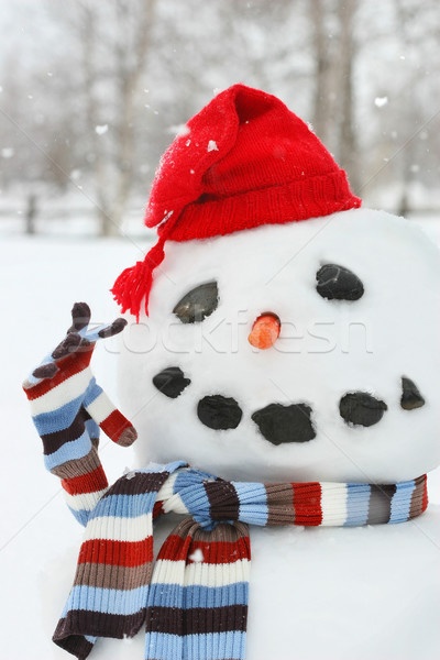 Mr. Snowman Stock photo © Sandralise