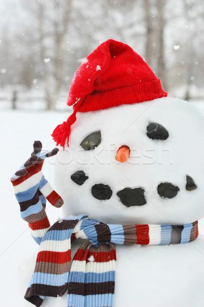 Sneeuwpop gebouw Rood hoed koud Stockfoto © Sandralise