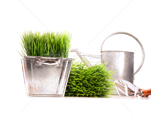 Watering can with grass anf garden tools on white Stock photo © Sandralise