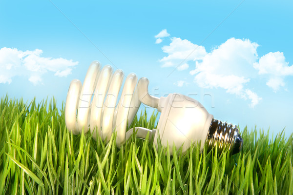 Stockfoto: Gras · blauwe · hemel · natuur · achtergrond · groene · Blauw