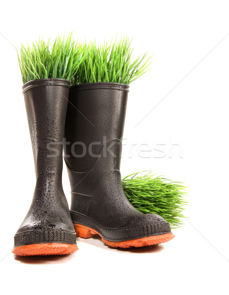 Rubber boots with grass on white Stock photo © Sandralise