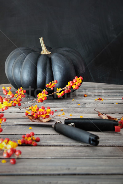 Black colored pumpkin with berries and scissors Stock photo © Sandralise