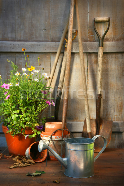 Garden tools and a pot of summer flowers in shed Stock photo © Sandralise