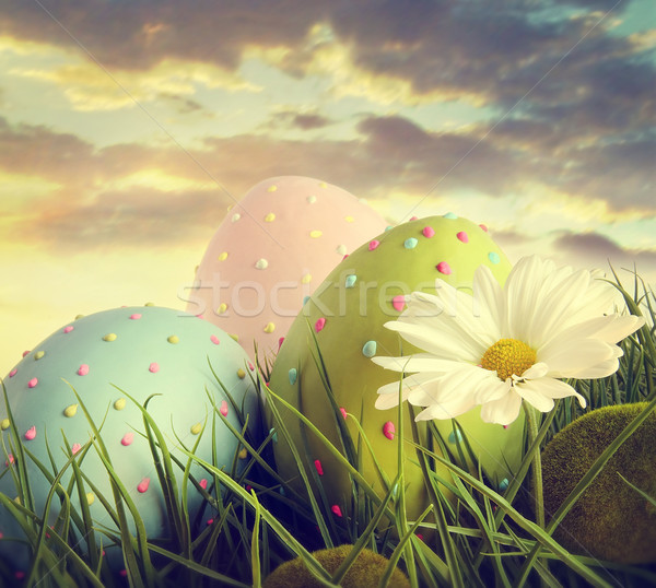 Large easter eggs in the tall grass Stock photo © Sandralise