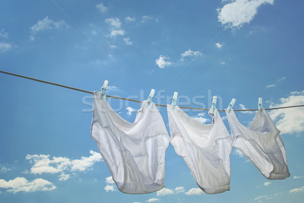 Men's underwear hanging on clothesline Stock photo © Sandralise