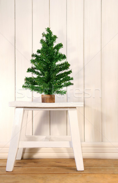 Little green fir tree Stock photo © Sandralise