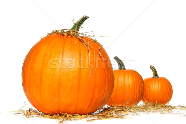 Stock photo: Pumpkins with straw on white