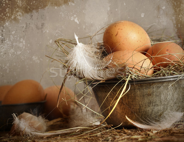 Brown speckled eggs  in old tin bowl Stock photo © Sandralise