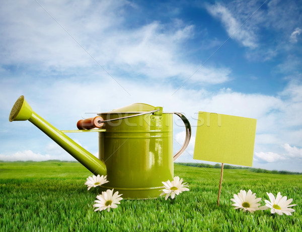 Watering can with daisies Stock photo © Sandralise
