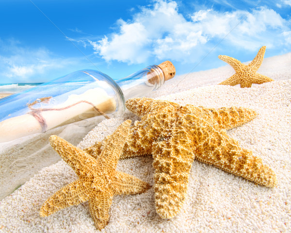 Stock photo: Message in a bottle buried in sand