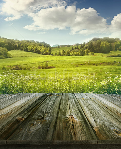 Summer pastoral background with wooden planks  Stock photo © Sandralise