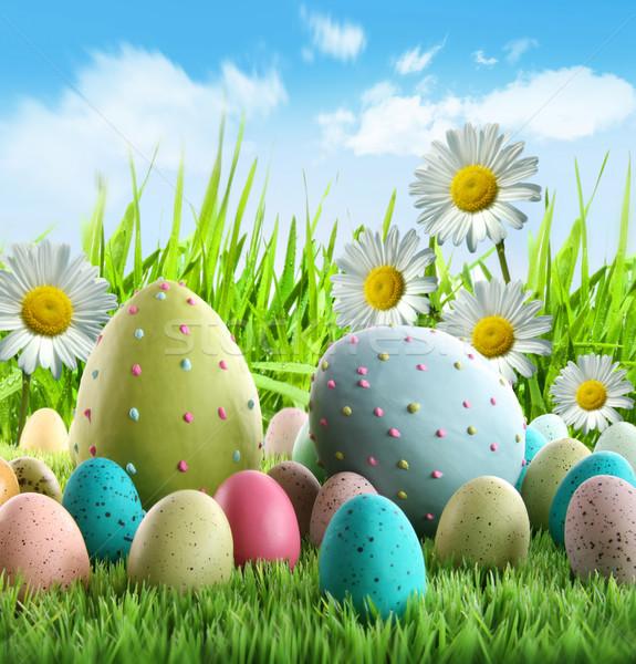 Stockfoto: Kleurrijk · paaseieren · madeliefjes · gras · hemel · voorjaar