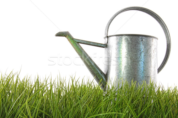 Watering can in grass Stock photo © Sandralise