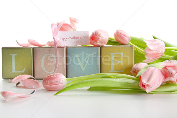 Colored blocks with tulips and gift card Stock photo © Sandralise