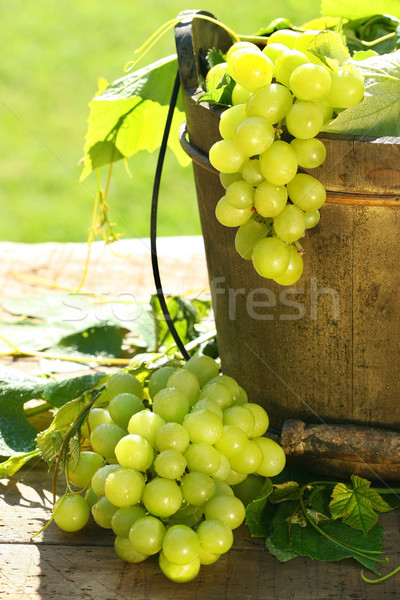 Green grapes and leaves Stock photo © Sandralise