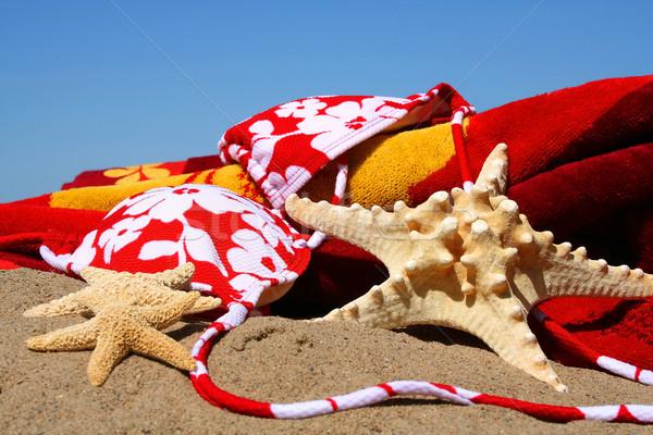 Bikini superior estrellas de mar toalla de playa arena agua Foto stock © Sandralise
