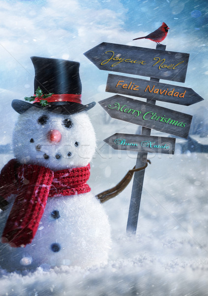 Snowman holding wooden sign with greetings Stock photo © Sandralise