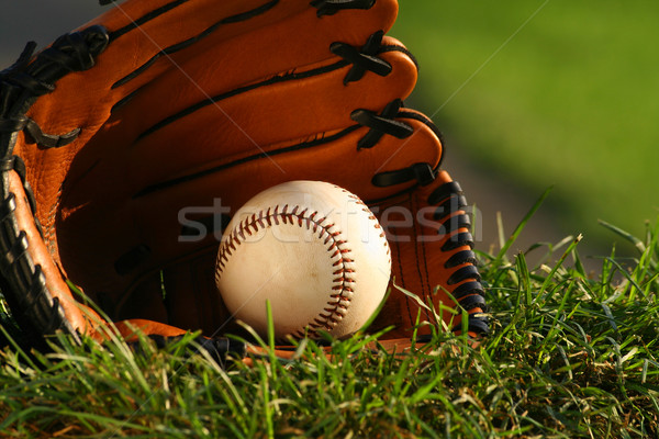 Baseball and glove on the grass   Stock photo © Sandralise