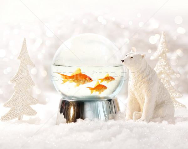 Stockfoto: Sneeuw · wereldbol · vis · winterlandschap · magisch · achtergrond